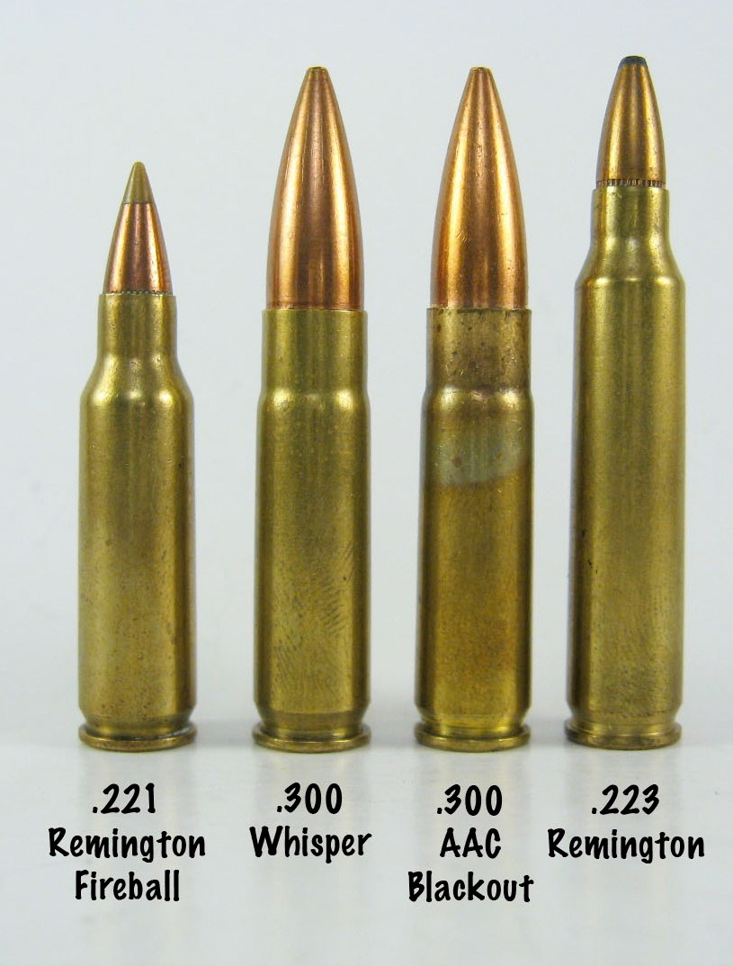 .300 whisper and .300 blackout